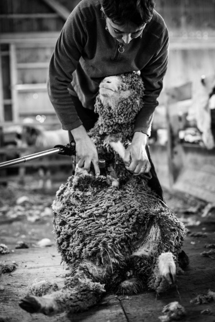 Photographe-Grenoble-Gap-Entreprises-Artisans